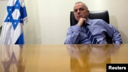 Minister Yuval Steinitz is seen in a January 2, 2013, file photo.