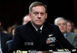 国家安全局局长罗杰斯将军在参议院情报委员会作证。(2017年6月7日)