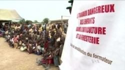 Ivory Coast Fights Child Labor on Cocoa Plantations