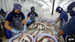 Xuất khẩu nông lâm thủy sản đã tăng cao và tổng kim ngạch xuất khẩu toàn ngành đạt mức kỉ lục khoảng 19,15 tỉ đôla, tăng 22,6% so với năm 2009