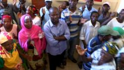 Nampula: Antigos trabalhadores de aviário exigem indemnizações