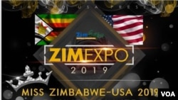 Zimbabweans In The U.S. Meet For Annual Business Expo in Chicago