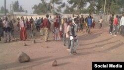 Mormii Oromiyaa,Arsii