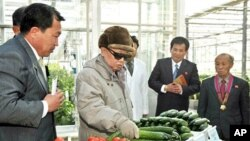 North Korean leader Kim Jong-Il inspecting the Pyongyang Vegetable Science Institute in Pyongyang, March 4, 2011