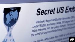 The Internet homepage of Wikileaks