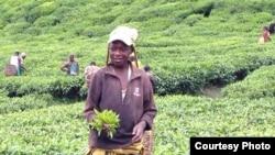 Archives: Rwanda Child Labor