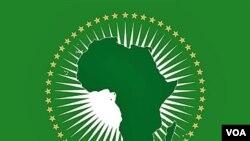 Negara-negara Uni Afrika akan mengadakan KTT di Addis Ababa, Ethiopia 30-31 Januari 2011.