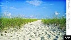 Thăm lại 'Người đàn bà trong cồn cát'