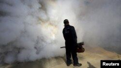 A municipal worker carries out fumigation to help control the spread of the mosquito-borne Zika virus in Caracas, Venezuela, Jan. 28, 2016.