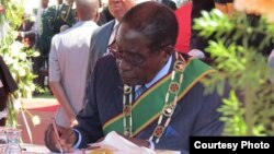 President Robert Mugabe may be serving his last term of office due to his advanced age. (File Photo)