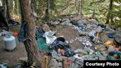非法大麻種植場嚴重污染環境 (照片來源:美國國家森林局)