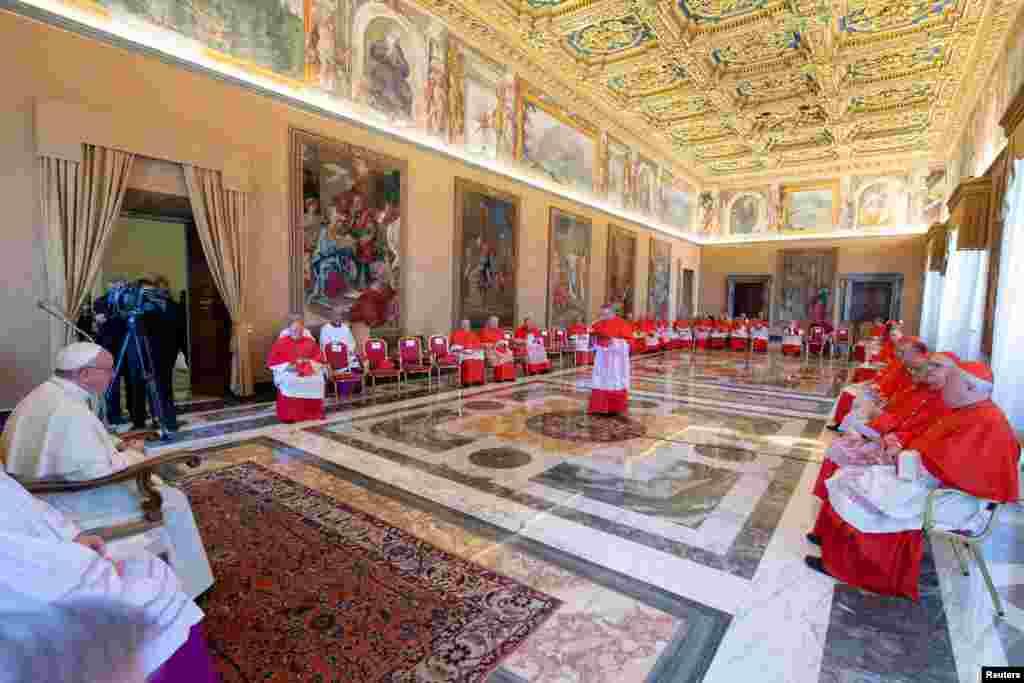 دیدار پاپ فرانسیس رهبر کاتولیک های جهان با اسقف های اعظم در واتیکان