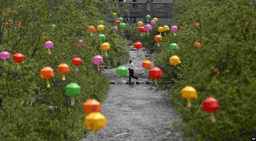 A man crosses a stream near the lanterns hanging for the upcoming Buddha's birthday on May 17 in Seoul, South Korea.