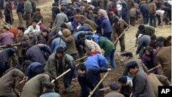 농번기 경작에 동원된 북한 주민들 (자료사진)
