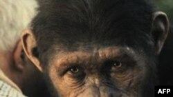 """Filmi """"Rritja e planetit të Majmunëve"""" tregon mbizotërimin e këtyre kafshëve ndaj njerëzve"""