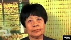 北京異見作家戴晴