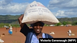 The Zimbabwe Vulnerability Assessment Committee says 565,000 people in rural areas will need food aid from January to March next year. (File Photo)