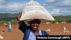 USAID and WFP in Zimbabwe