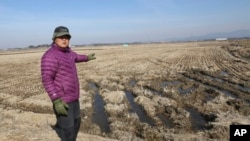 FILE - Chung Young-chul shows his rice field during an interview in Seosan, South Korea. Chung takes a drag on his cigarette and watches as wild ducks fly across rice fields and land on a reservoir in this remote farming village, Feb. 21, 2017. He's among nearly 2,000 people - ex-gangsters, ex-convicts, former prostitutes, orphans - who were once imprisoned here, forced to work without pay for years and are now largely forgotten.