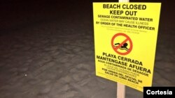 Las autoridades han prohibido el paso de surfistas y bañistas a la zona.