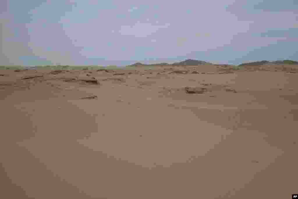2000年的時候中國內蒙古科爾沁地區廣大面積的土地是荒蕪的沙漠