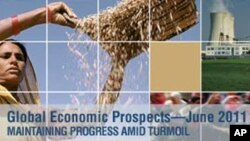 World Bank: Developing Country Growth Outpacing Rich Nations