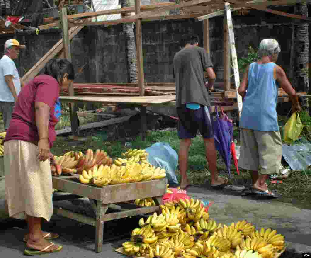 A woman inspecting bananas for sale on a Tacloban street, Nov. 21, 2013. (Steve Herman/VOA)