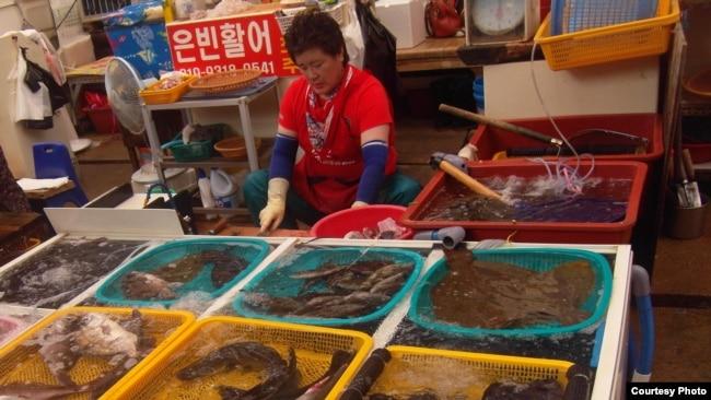 Pedagang ikan di Pasar Jagalchi, Busan, Korea Selatan. (Foto courtesy: Defri Yona).