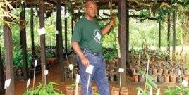 Cameroonian researcher surveys medicinal plants
