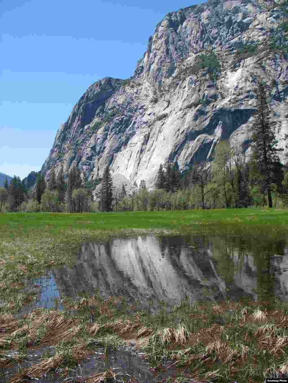 Klimatske promjene i povećanje temperatura pogađa sve krajolike, visinske i nizinske, uključujući o ovaj ekosistem planinskih livada u Nacionalnom parku Yosemite, u Kaliforniji. (Ben Young Landis/USGS)
