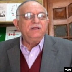 Mahdi Abdel-Hadi, poltički analitičar
