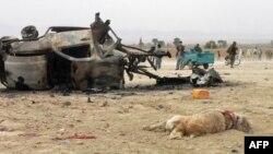 NATO Afganistan'da Sebep Olduğu Sivil Ölümlerden Özer Diledi