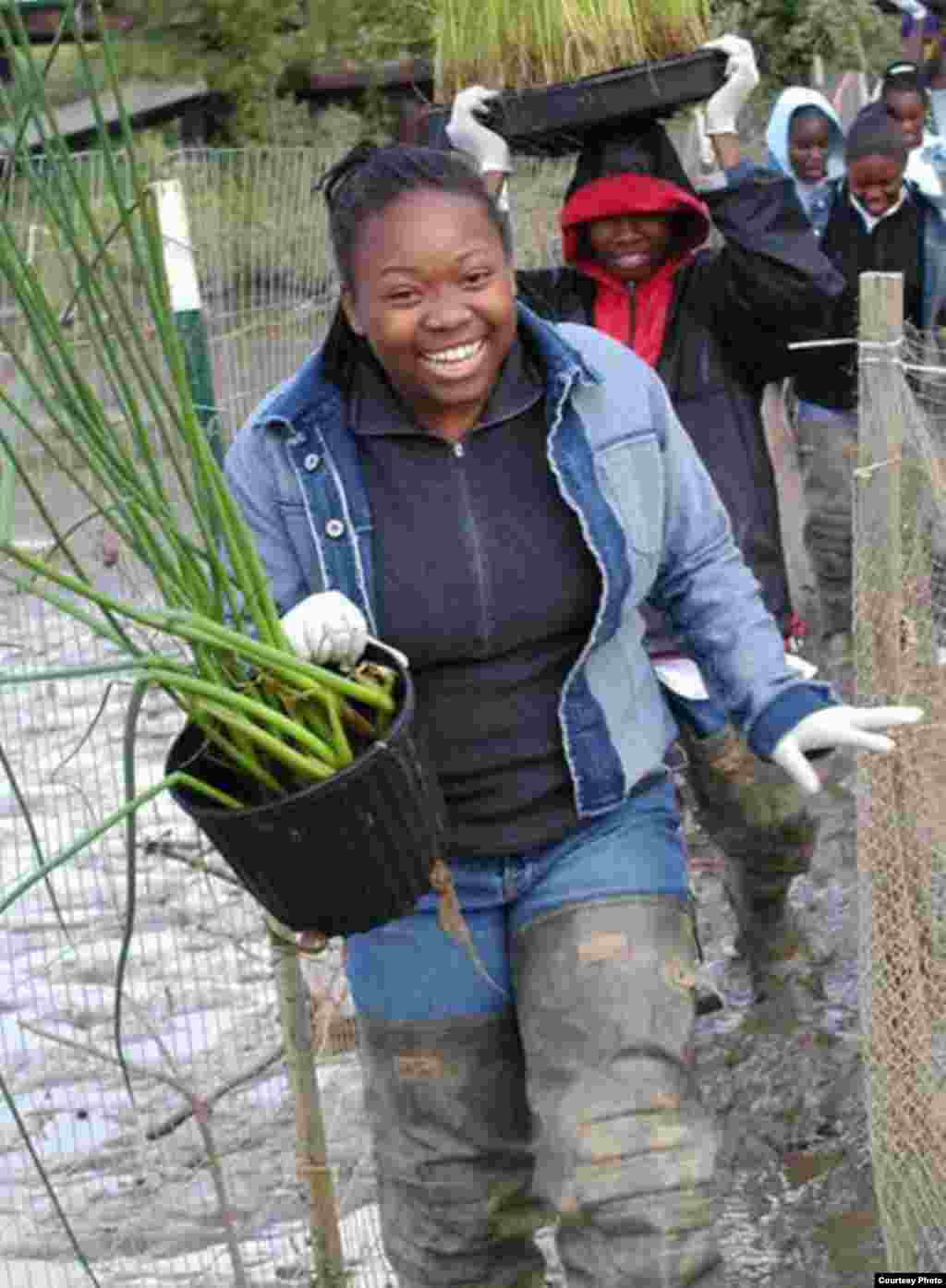 Volunteers do service projects to rebuild the wetland in the Anacostia River. (Anacostia Watershed Society)