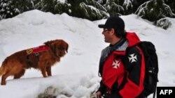 Các đội tìm kiếm cùng với chó cứu hộ đang bới tìm trong các đống tuyết lở xem có còn tay đua nào mất tích hay không