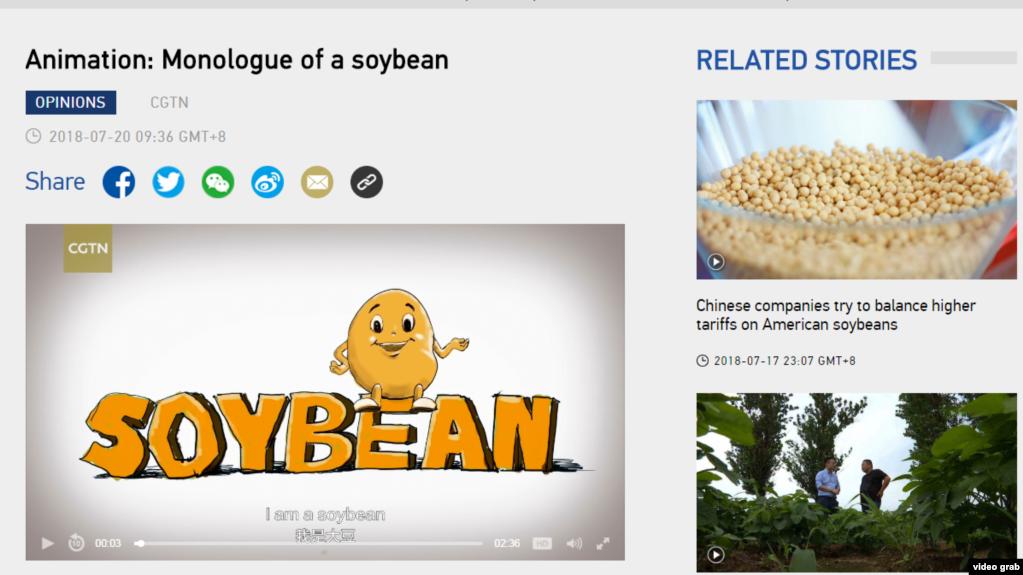 2018年7月20日,中国官方海外媒体CGTN发布了一段英文的动画视频《大豆的独白》(Monologue of a Soy Bean),以一个卡通大豆的口吻讲述美中贸易战对美国农业州的影响。(图为CGTN网站截屏,时间2018年7月20日下午2点。)