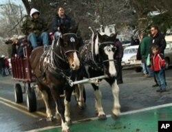 史托克伯雷杰镇上的观光马车
