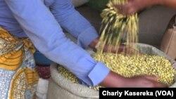 Reportage de Charly Kasereka sur l'économie à Béni