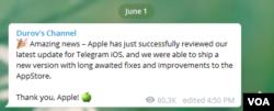 Сообщение Павла Дурова в его Telegram-канале