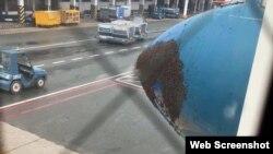 Phi hành đoàn quyết định không mở cửa máy bay và nhờ bộ phận mặt đất can thiệp bằng cách dùng bình xịt xua đuổi đàn ong.
