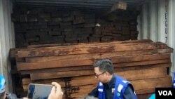 Kayu merbau asal Papua yang diamankan Gakkum KLHK di Pelabuhan Teluk Lamong, Surabaya (foto: Petrus Riski/VOA).