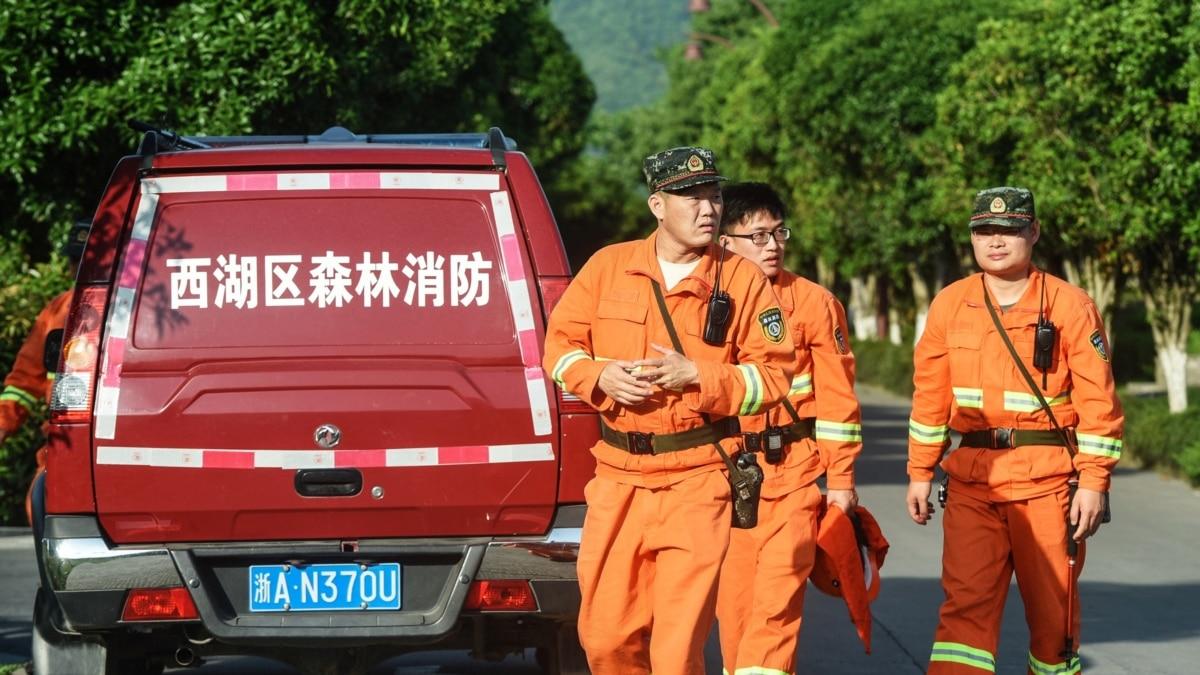 Macan Tutul Berkeliaran di China Setelah Kabur dari Taman Safari