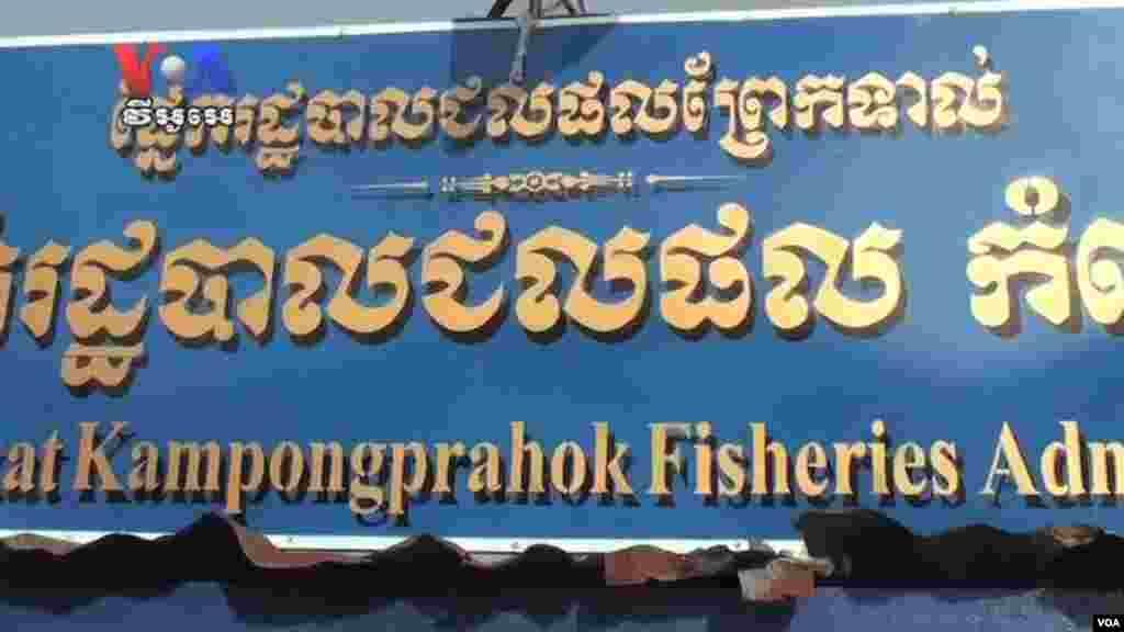 ໃນຂະນະທີ່ປາຢູ່ໜອງໃຫຍ່ຕົງເລສາບກໍາລັງຫລຸດລົງ ການຫາປາຜິດກົດໝາຍຍັງສືບຕໍ່ມີຢູ່.(Cambodia news in Khmer)