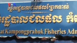 As Tonle Sap Fish Dwindle, Illegal Catches Persist (Cambodia news in Khmer)
