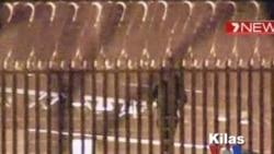 Kilas VOA 20 Januari 2012