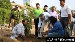 کراچی کے اربن فاریسٹ میں میئر کراچی نے پودا لگا کر اسے دوبارہ انتظامیہ کے حوالے کر دیا۔
