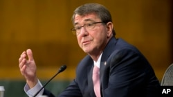 애슈턴 카터 미 국방장관이 9일 상원 군사위원회 청문회에서 증언하고 있다.