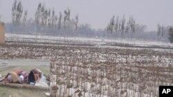 نمای از برف پیش از وقت در ولایات شمال شرقی افغانستان