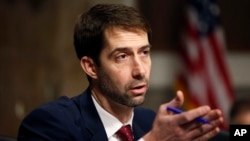 El proyecto de ley RAISE busca mejorar los trabajos de los estadounidense limitando el número de inmigrantes que llegan a EE.UU. La iniciativa está patrocinada en el Senado por Tom Cotton de Arkansas y David Perdue de Georgia.