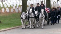 Unique Horses Lead US Heroes on Final Journey