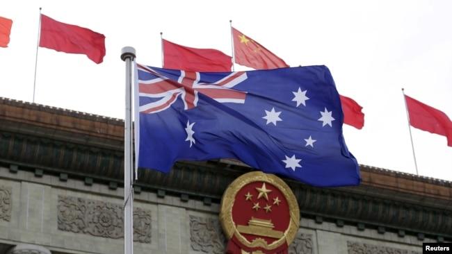 """澳大利亚调查""""令人深感不安""""的中国政治介入指称"""